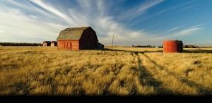 holt fattoria 3