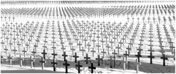 cimitero di guerra croci