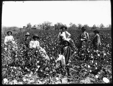 whitehead schiavi bambini cotone