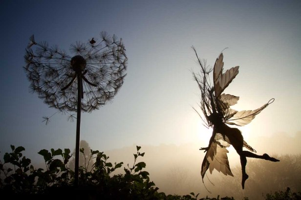 Wight Aurelia-and-dandelion