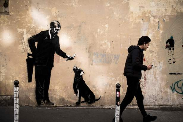 Banksy cane osso