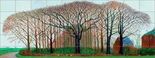 David Hockney pannelli
