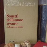 F.G. Lorca, Sonetos del amor oscuro