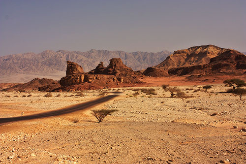 israele-deserto-del-negev