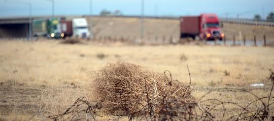 Deserto rotolacampo
