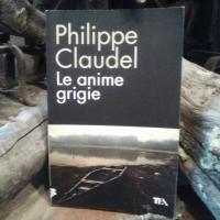 """Philippe Claudel, Le anime grigie. """"La follia è un paese dove non entra chi vuole. Tutto va meritato""""."""