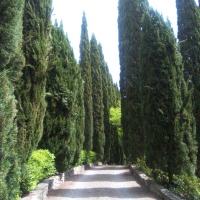 Viaggi letterari - Toscana
