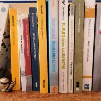Nuovi romanzi di formazione