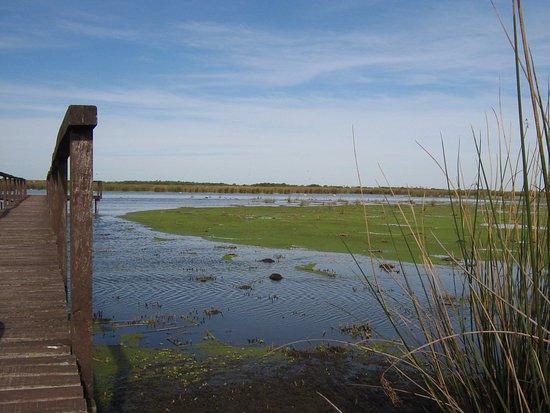 Argentina Campana reserva-natural-otamendi