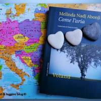 Melinda Nadj Abonji, Come l'aria
