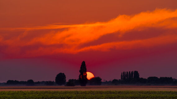 Polesine tramonto